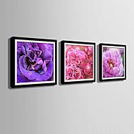 Blomstret/Botanisk Innrammet Lerret / Innrammet Sett Wall Art,PVC Svart Passpertou Inkludert med Frame Wall Art