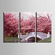 Maisema European Style,3 paneeli Kanvas Pysty Painettu Wall Decor For Kodinsisustus