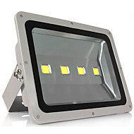 200W Warm Cool White Color LED Floodlight Lamp Outdoor Home Garden(AC85-265V)