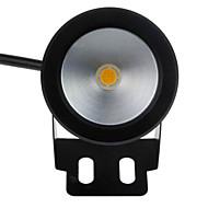 baratos Focos-1pç 10 W Lâmpada Subaquática Impermeável / Decorativa Branco Quente / Branco Frio 12 V Iluminação Externa / Piscina / Pátio