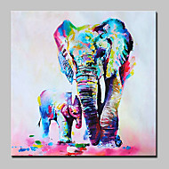 billiga Djurporträttmålningar-Hang målad oljemålning HANDMÅLAD - Popkonst Moderna Duk
