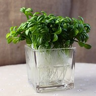 30 Branches Pastoral Style Simulation Bean Sprouts Fake Plant