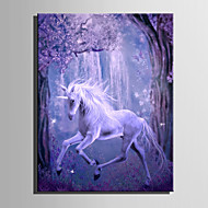 E-HOME Stretched LED Canvas Print Art Magic White Horse LED Flashing Optical Fiber Print One Pcs