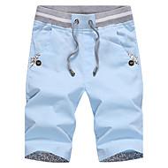 Homens Chique & Moderno Reto Shorts Calças - Sólido