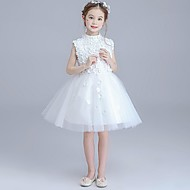 plesový šaty koleno délka květina dívčí šaty - organza bez rukávů šperk krk s aplikací od ydn