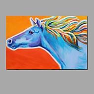 halpa -Maalattu EläinAbstrakti Moderni/nykyaikainen 1 paneeli Kanvas Hang-Painted öljymaalaus For Kodinsisustus
