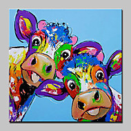 cheap Oil Paintings-Hand-Painted Animals Square, Abstract Modern/Contemporary Canvas Oil Painting Home Decoration One Panel