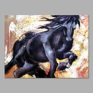 billiga Djurporträttmålningar-Hang målad oljemålning HANDMÅLAD - Djur Abstrakt Modern Duk