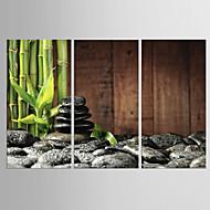 hesapli -Gerdirilmiş Tuval Resmi Soyut, Üç Panelli Tuval Dikey Boyama Duvar Dekor Ev dekorasyonu
