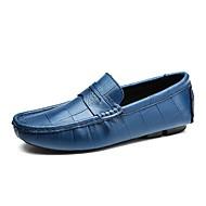 Для мужчин обувь Натуральная кожа Весна Осень Обувь для дайвинга Мокасины и Свитер Назначение Повседневные Для вечеринки / ужина Белый