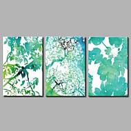 billiga Tryck-Stretchad Kanvastryck Moderna, Tre paneler Duk Horisontell Panoramautsikt Tryck väggdekor Hem-dekoration