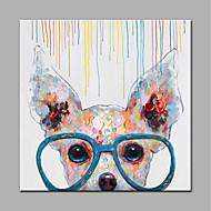 billiga Djurporträttmålningar-Hang målad oljemålning HANDMÅLAD - Djur Modern Stil Utan innerram / Valsad duk