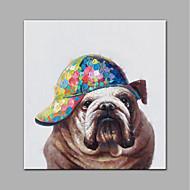 billiga POP Art-Hang målad oljemålning HANDMÅLAD - Popkonst Moderna Duk / Valsad duk