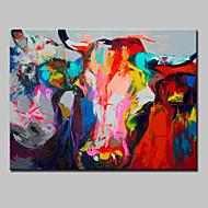 billiga Djurporträttmålningar-Hang målad oljemålning HANDMÅLAD - Djur Djur Moderna Duk