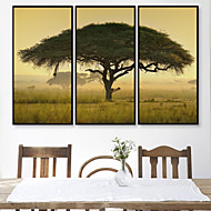 billige Innrammet kunst-Landskap Blomstret/Botanisk Tegning Veggkunst,PVC Materiale med ramme For Hjem Dekor Rammekunst Stue Innendørs
