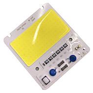 ieftine -50W led cip cip rezistent la apa ip65 LED lampa bec 220v inteligent ic pentru diy reflector lumina reflectoarelor cald / cool albe (1