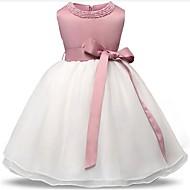 Dijete Djevojka je Poliester Kolaž Party Sva doba Bez rukávů Haljina Svečana odjeća Blushing Pink