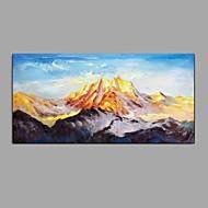 billiga Landskapsmålningar-Hang målad oljemålning HANDMÅLAD - Landskap Blommig / Botanisk Klassisk Moderna Duk