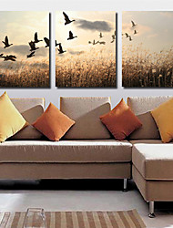 Canvas Set Landscape Classic Traditional,Three Panels Horizontal Print Wall Decor For Home Decoration