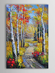 Hand Painted Oil Painting Landscape Path in Woods with Stretched Frame