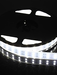 cheap -Dual Row 600x5050 SMD 144W  6000LM IP67 Waterproof  White Light LED Strip Light (5-Meter/DC 12V)