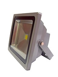 abordables -ce pse impermeable IP65 50w llevada blanca caliente ac85-265v proyector