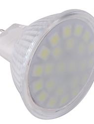 abordables -ywxlight® gu5.3 (mr16) projecteur à led mr16 24 leds smd 5050 blanc froid 360lm 6000-6500k ac 220-240v