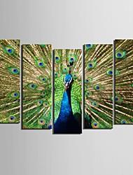 e-Home® allungata tela pavone set pittura decorativa di 5