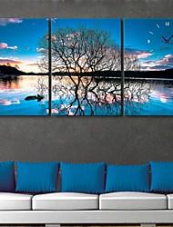 e-Home® refleksion af træer uret i lærred 3stk