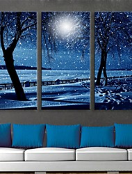 cheap -E-HOME® Stretched LED Canvas Print Art Snowy Night Flash Effect LED Flashing Optical Fiber Print Set of 3