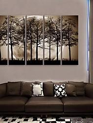 e-FOYER toile tendue art la nuit sous les ombres des arbres peinture décoration ensemble de cinq