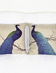 Set of 2 Peacock Throw Pillow Case Pillowcase Sofa Home Decor Cushion Cover