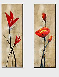 pintura a óleo decoração flores abstratas mão telas pintadas com esticada enquadrado - conjunto de 2