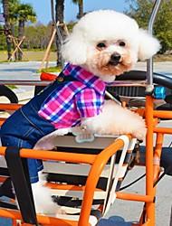 abordables -Gato Perro Camiseta Pantalones Ropa para Perro Ajedrez Vaqueros Rosa Verde Azul Algodón Disfraz Para mascotas Cosplay Boda