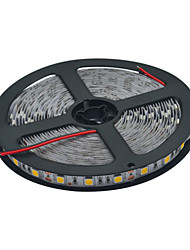 Wires 5M 60W  5120lm 300-5050 SMD  LED Strip Lamp (DC12V /5M)