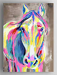 cheap -Oil Painting Color Cow Hand Painted Canvas with Stretched Framed Ready to Hang