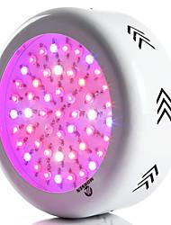 morsen® ufo 150w fulde spektrum førte vokse lyser hydroponiske systemer førte lamper til planter grøntsag vasker drivhus