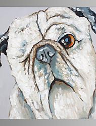 お買い得  -ハング塗装油絵 手描きの - ポップアート コンテンポラリー キャンバス