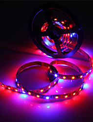 cheap -ZDM 5M Waterproof 5050 4 Red+1 Blue Full Spectrum Led Grow Light 300Leds Led Strip Lamps for Plants Growing Non Waterproof Aquarium Lighting 1pc
