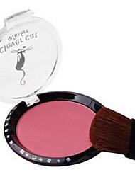 8 Fards Sec Poudre Gloss coloré Humidité Anti Peau Grasse Longue Durée Correcteur Tonalité Inégale de la Peau Naturel Reserrement des