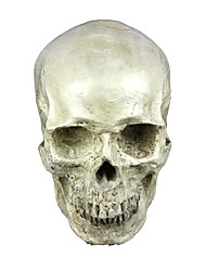 cheap -Skeleton / Skull Mask Unisex Halloween Day of the Dead Festival / Holiday Halloween Costumes Ivory Solid
