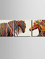 cheap -E-HOME® Stretched Canvas Art Color Horse Decoration Painting  Set of 3