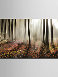 cheap -Stretched Canvas Art Landscape Morning Mist