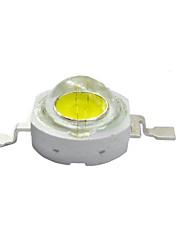 abordables -1W llevó granos de la lámpara (eficacia luminosa de trabajo voltage3.0-3.4 v 120 lm / W) 10 empaquetados para la venta
