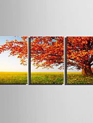 cheap -Landscape Floral/Botanical European Style, Three Panels Canvas Vertical Print Wall Decor Home Decoration