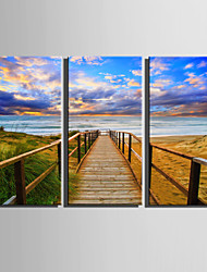 cheap -E-HOME Stretched Canvas Art Beach Plank Road Decoration Painting  Set Of 3