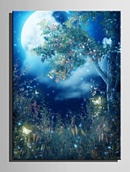 E-HOME® Stretched LED Canvas Print Art Forest Butterfly LED Flashing Optical Fiber Print One Pcs