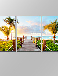 VISUAL STAR®Amazing Beautiful Seascape Canvas Wall Art for Home Decoration Tropical Palm Tree Beach Canvas Prints with Frame
