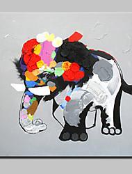 abordables -Peint à la main Animal Bande dessinée Peintures à l'huile,Moderne Style européen Un Panneau Toile Peinture à l'huile Hang-peint For
