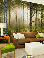 cheap -JAMMORY Wallpaper For Home Wall Covering Canvas Adhesive required Mural Forest sun XL XXL XXXL